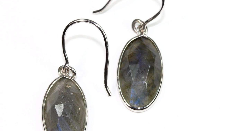 Labradorite Dangler Earrings