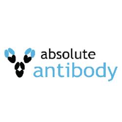 absolute-antibody