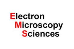 electron-ems-300x200