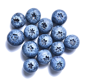 blueberry-individualLG.png
