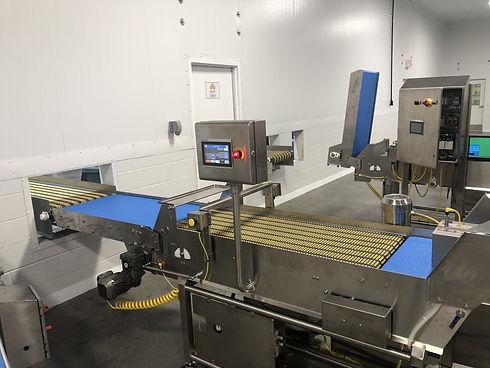 Flip Conveyor2.jpg