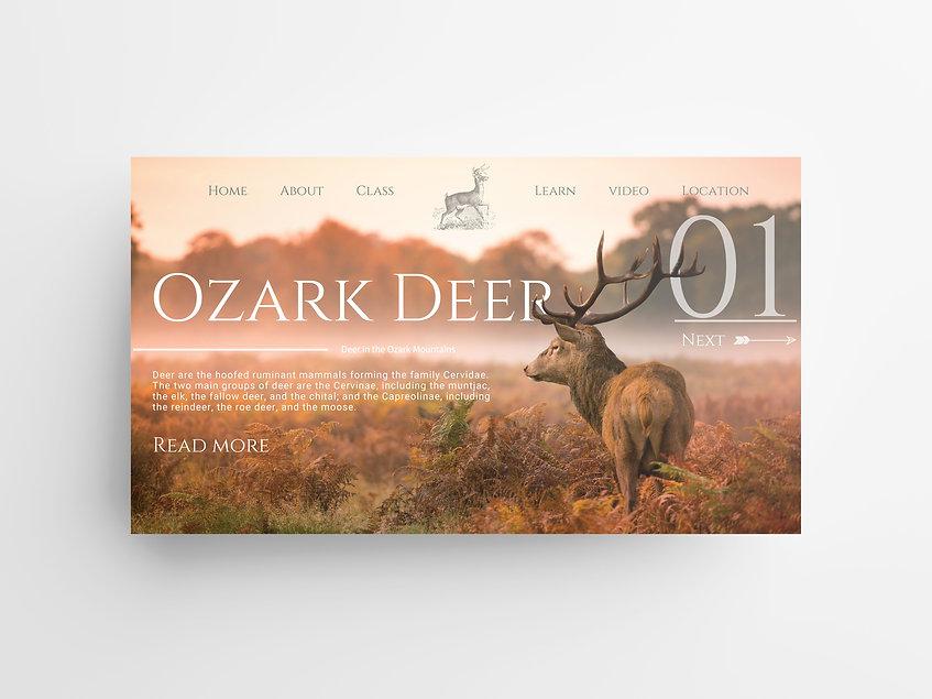 Website Design Harrison Arkansas Ellevate Digital Designs