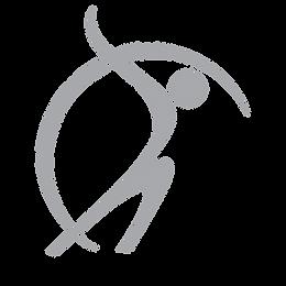 JPT Logo Dark Grey.png