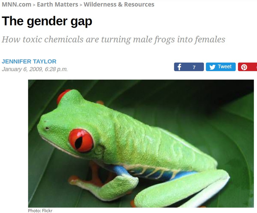 jennifer gender gap.jpg