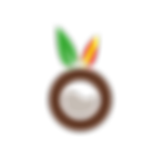 Logo_Coconut-11.png