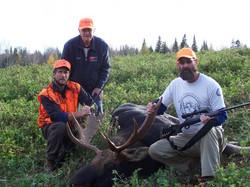 Maine moose hunts