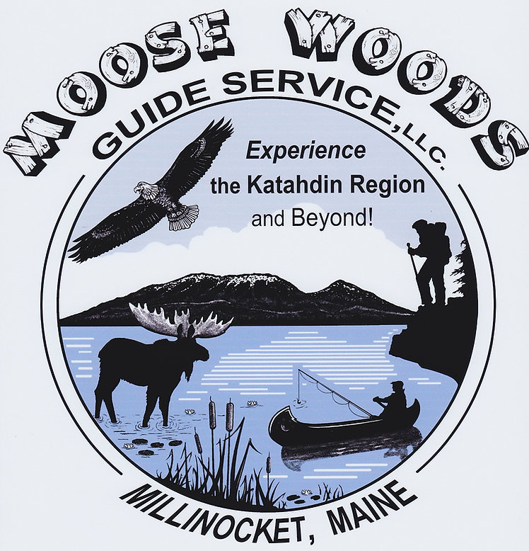 Moose Woods Guide Service | Registered Maine Guides