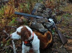 Maine partridge hunting