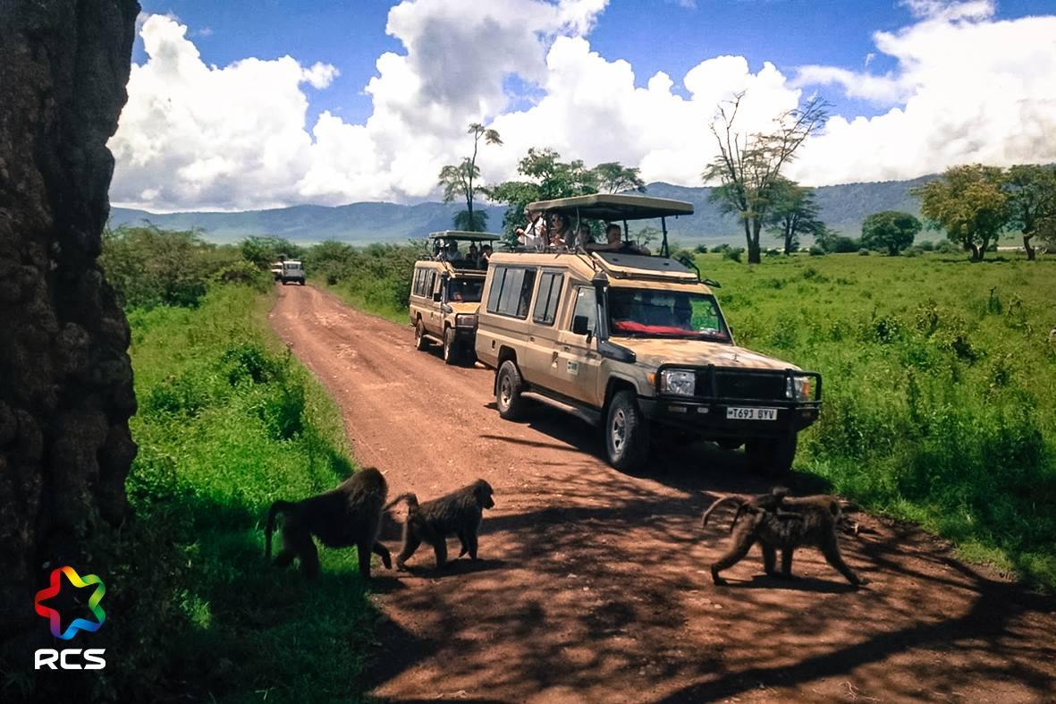Инсентив поездка в Танзанию