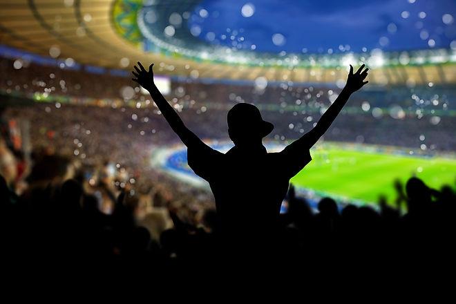 Cheering fan in full stadium