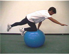 Physio Ball 1.png