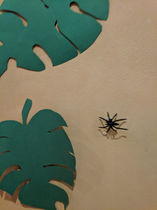 Spiders in the Ballroom Jungle