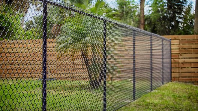 Black Chain Link Fence.jpg