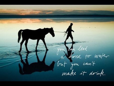 YOU CAN LEAD A HORSE TO WATER, BUT YOU CAN'T MAKE HIM DRINK