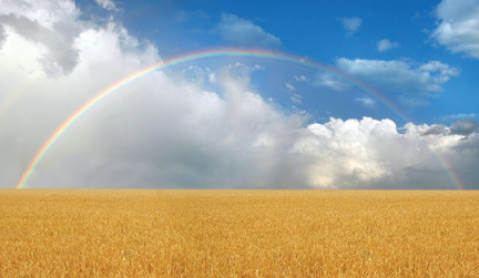 GOD GAVE A RAINBOW, DON'T FORCE ME TO CHOOSE A COLOR