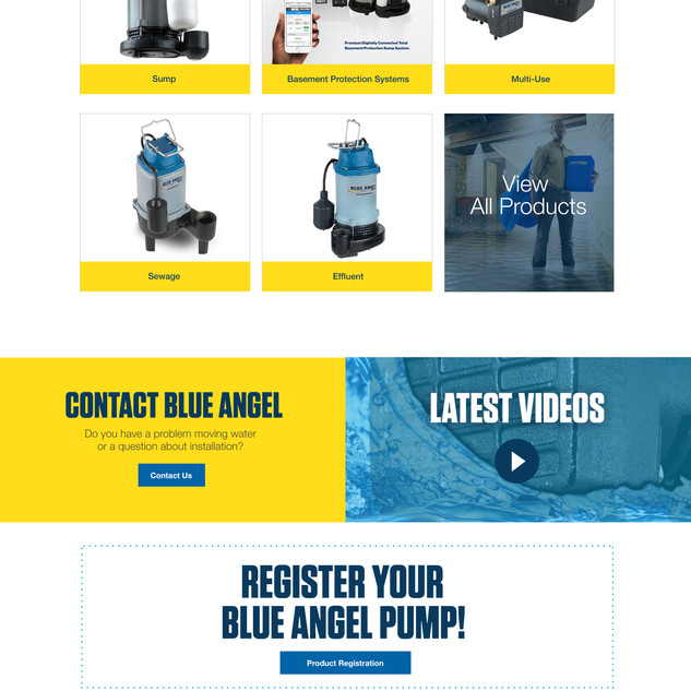 Blue Angel Website Design