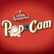 POPCAM FACEBOOK GAME