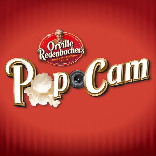 POPCAM FACEBOOK GAME