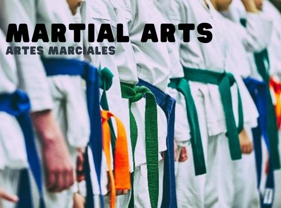 dyad - martial arts.png