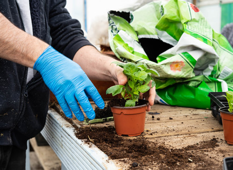 National Gardening Week 2020