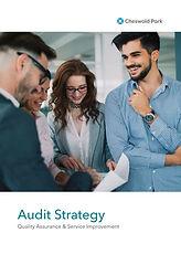 Audit_strategy_2020 1-1.jpg