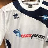 Sorrento FC FFA Cup Print Light & Cut PU