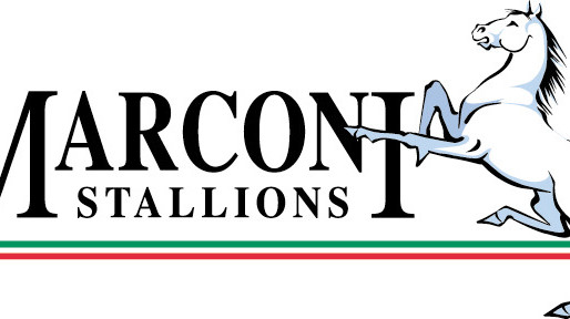 Marconi Stallions continue to wear Errea with pride..