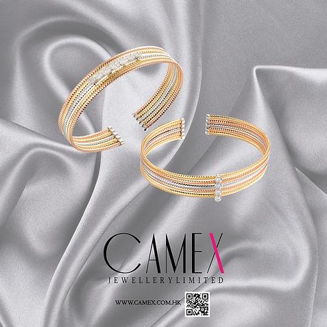 CAMEX2018 01-VO+.jpg