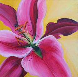 Pink Lilly stamen detail.jpg