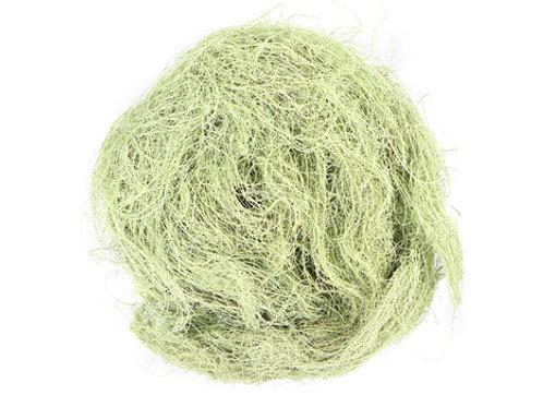 Usenea Lichen- Wild Crafted