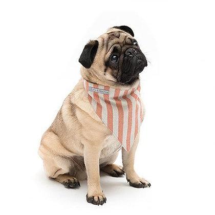 Orange Stripe Brushed Cotton Dog Neckerchief - Mutts & Hounds