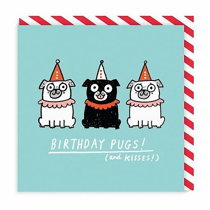 Birthday Pugs (and kisses) Greeting Card