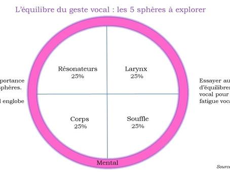 Comment se déroule un cours chez MT Cours de chant et technique vocale ?