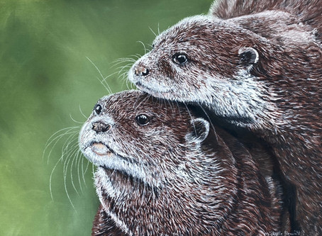 Little otters finished