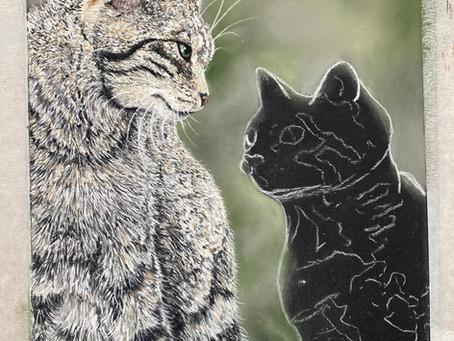 Wildcat and kitten