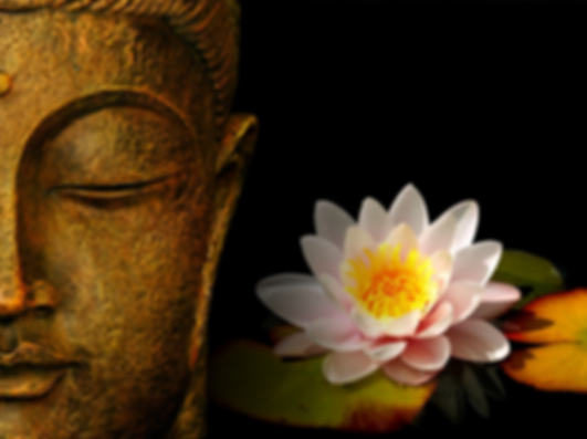 buddha-with-flower ongoing events.png