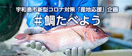 bnr_uwajima-tai.jpg