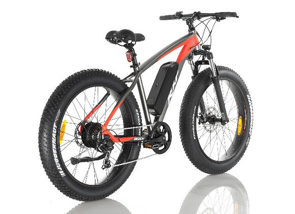 FAT BIKE RXF BB