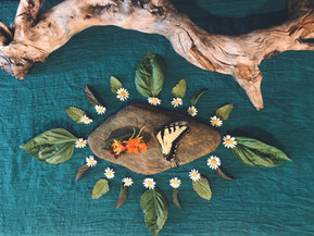 Creating a Sacred Space in Your Home: 5 Easy Steps