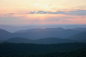Field Notes: Blue Mountains & Heron Blessings