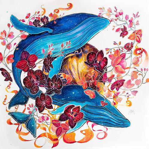 """12""""x12"""" Blue Whales Art Print"""
