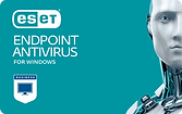 card - ESET Endpoint Antivirus for Windo