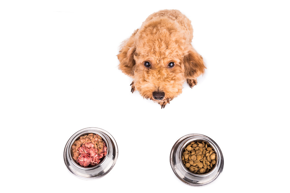 Raw pet food - FDA Regulation