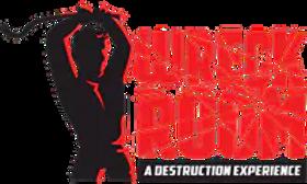Wreck-Room-Logo-3000x18001.png.webp