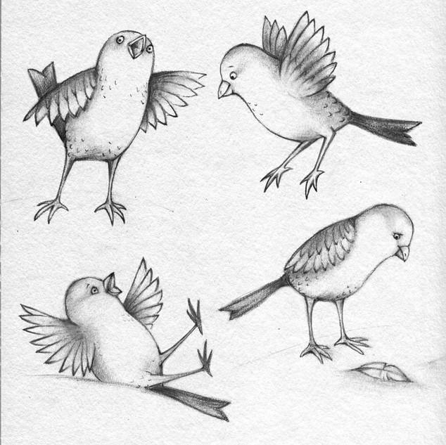 bird character study