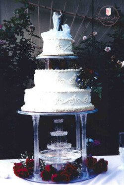 Web Cake 20