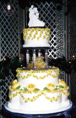 Web Cake 25B