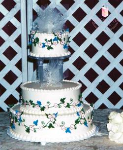 Web Cake 30