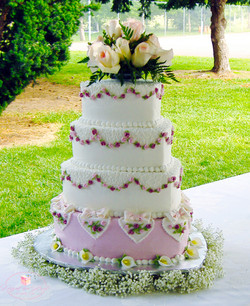 Web Cake 17New