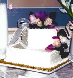 Web Cake 21
